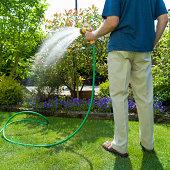 Senior man watering garden with hose, rear view