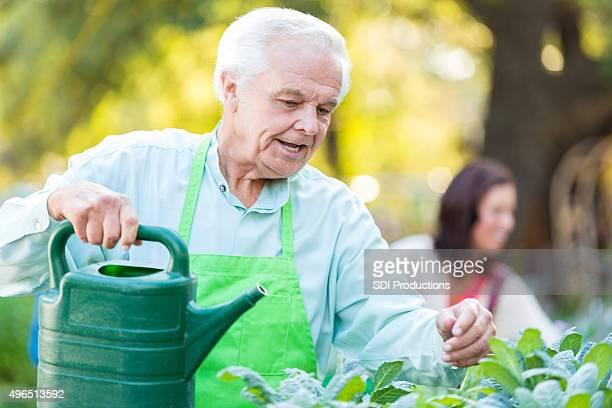 Alter Mann gießen Pflanzen bei der Arbeit im Kinderzimmer