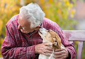 Cute dog kissing senior man on bench in park with yellow tree in background in autumn. Pet love and care concept. Dog conncetion to people. Alternative therapy