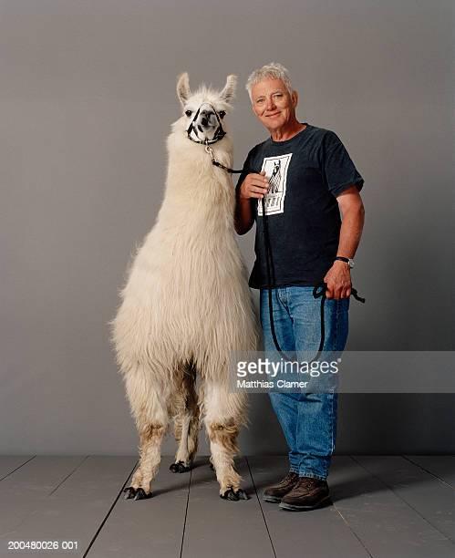 Senior man with llama