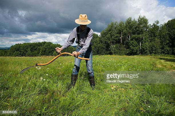 Senior man working with a scythe in a field.