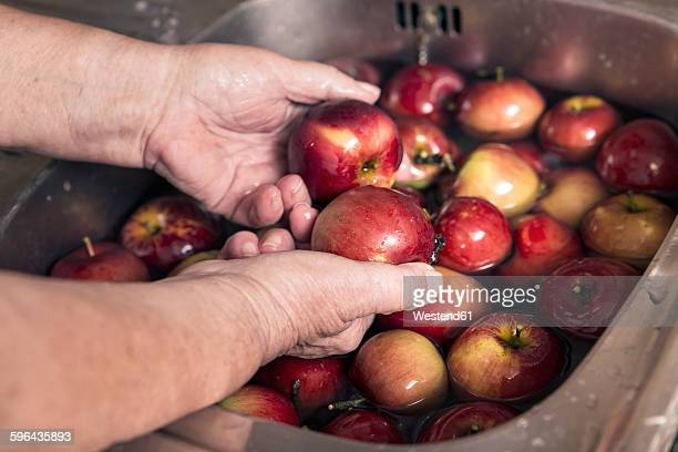 Senior woman cleaning apples in a sink, close-up