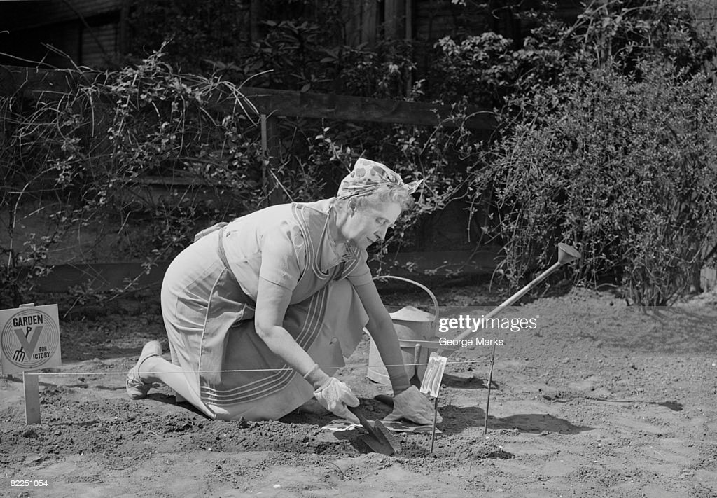 Senior woman digging in garden : Stock Photo