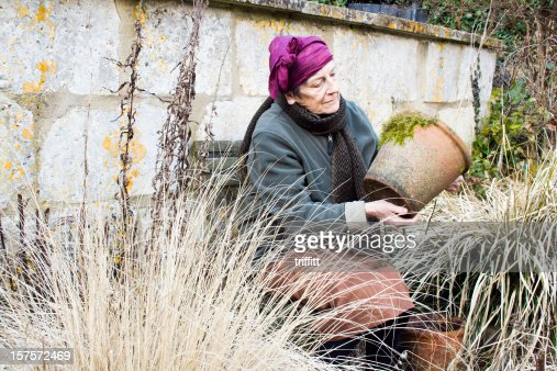 Senior Woman Gardener in Winter : Stock Photo