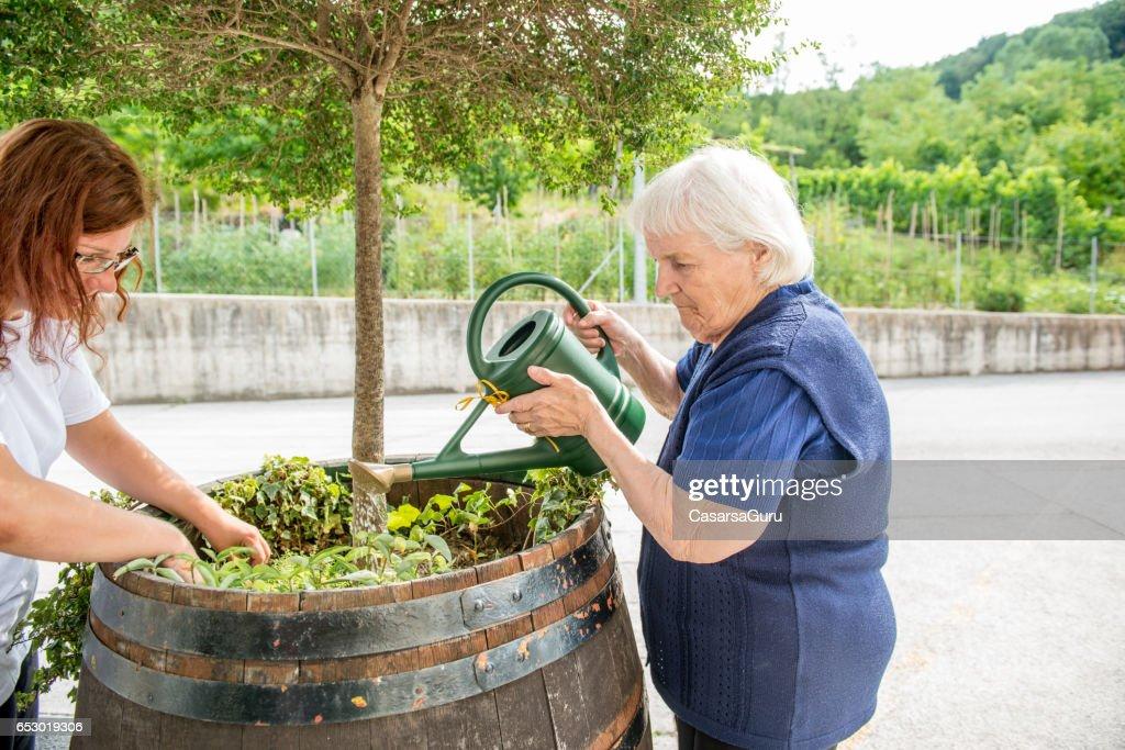 Senior vrouw tuinieren in het bejaardentehuis : Stockfoto