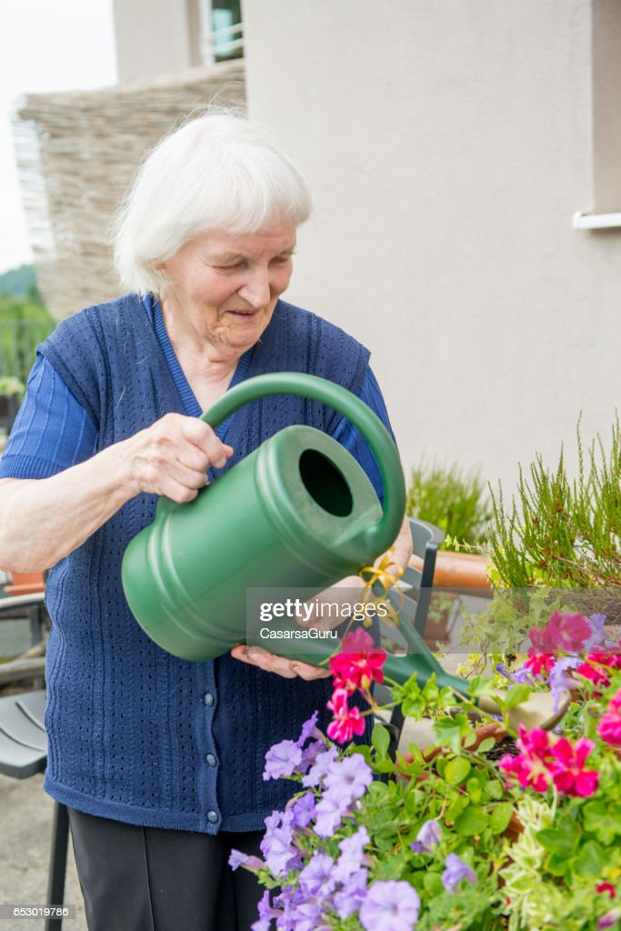Senior Woman Gardening in The Retirement Home : Stock-Foto