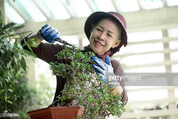 Femme Senior jardinage