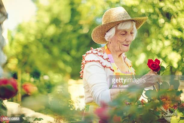 老人女性ガーデニング