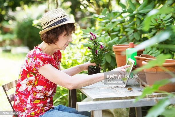 senior woman gardening  using digital tablet for internet research