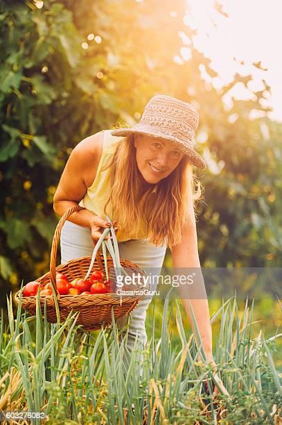 Senior Woman Harvesting Onion Leaves