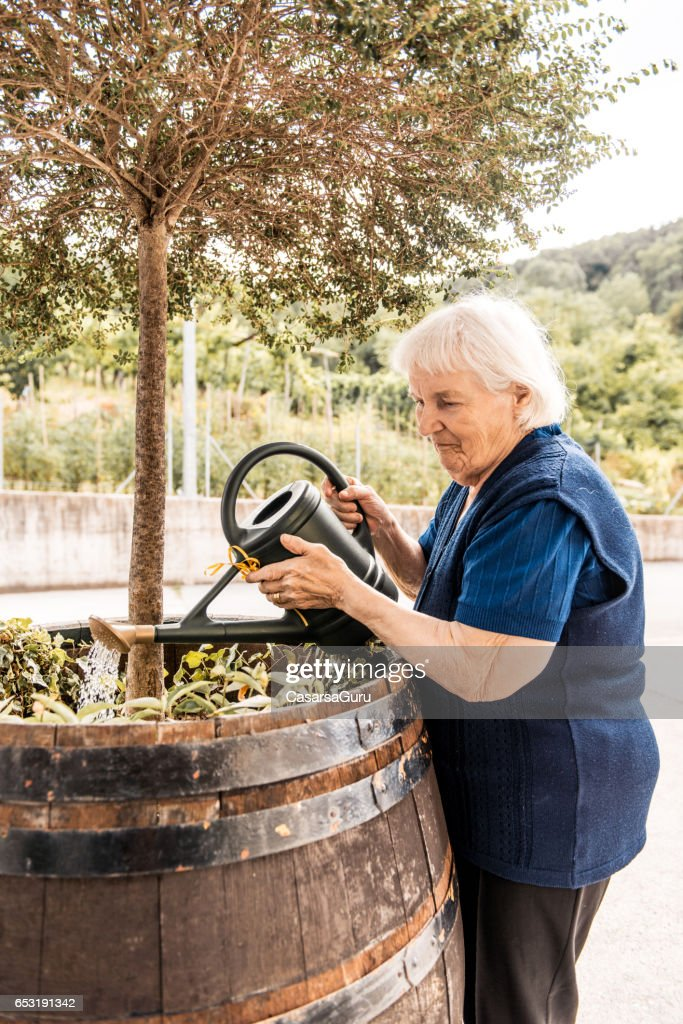 Senior Woman In The Retirement Home Watering Plants : Stock Photo