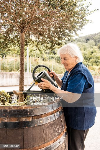 Senior Woman In The Retirement Home Watering Plants : Stock-Foto