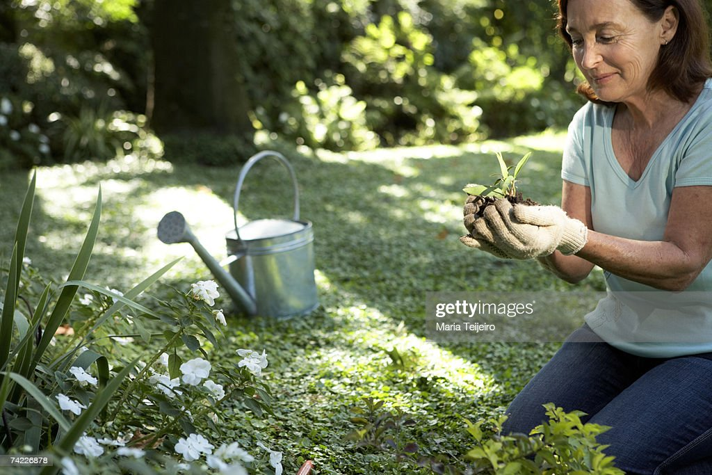Senior woman kneeling in garden, holding seedling : Stock Photo