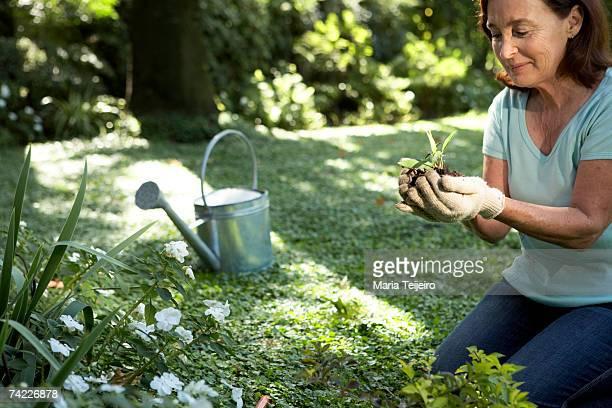 Senior woman kneeling in garden, holding seedling