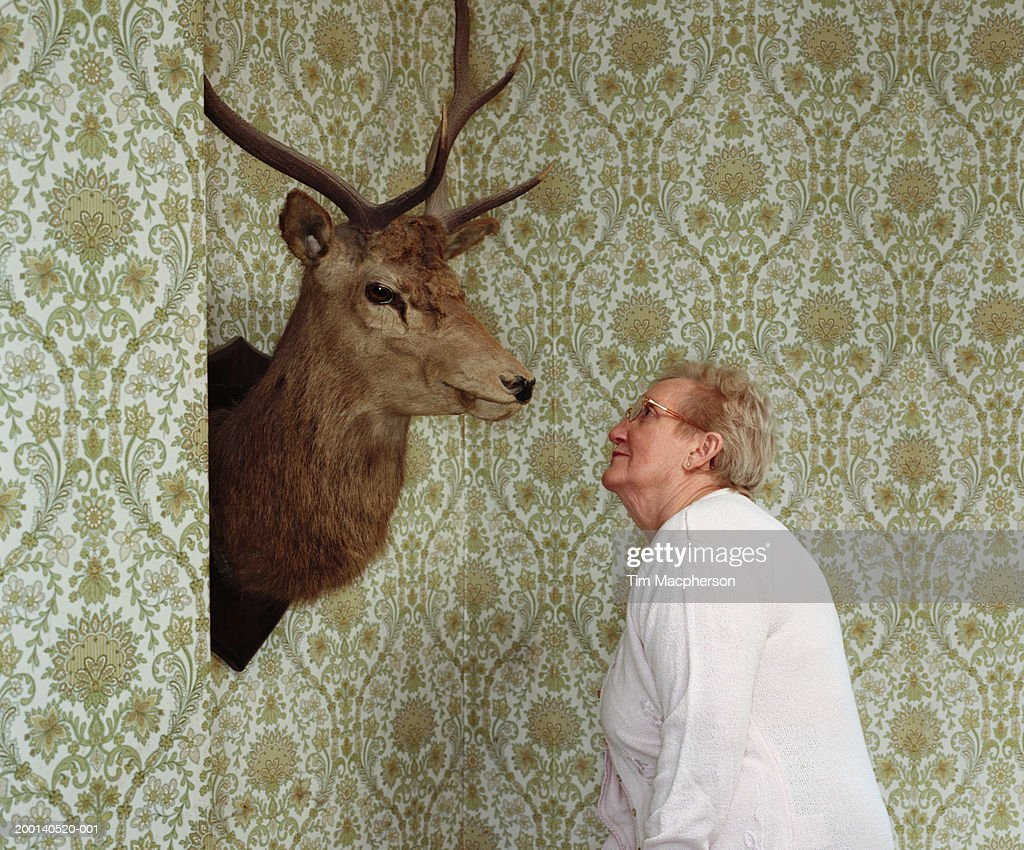 Senior woman looking at moose head on wall : Stock Photo