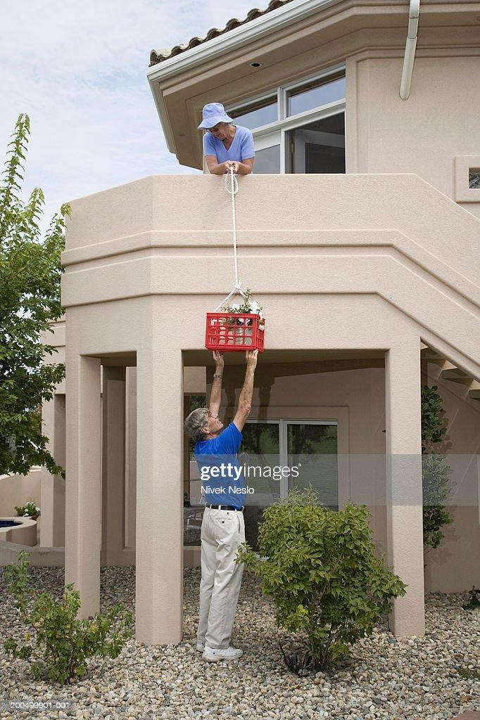 Senior woman lowering plant in basket to senior man