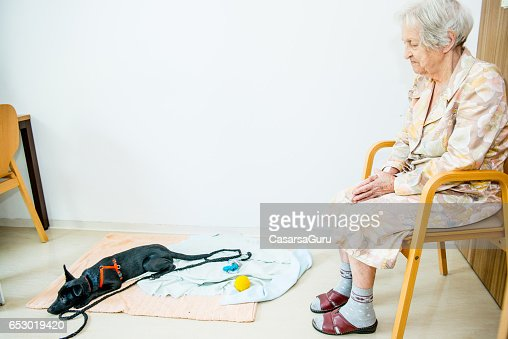 Senior Woman Playing With Her Dog In The Retirement Home : Foto stock