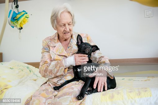 Senior Woman Playing With Her Dog In The Retirement Home : Bildbanksbilder
