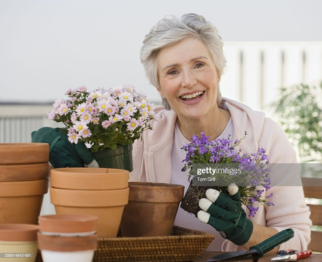 Senior woman potting plants on porch, portrait : Stock Photo