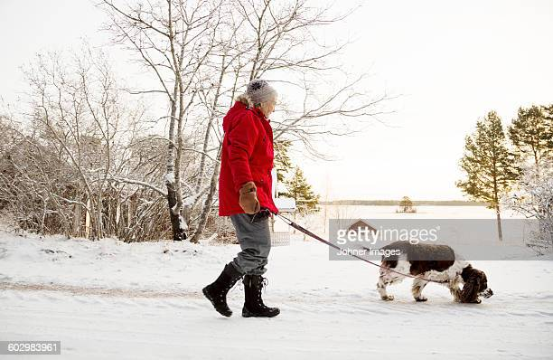 Senior woman walking dog