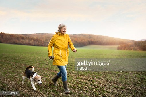 Senior woman with dog on a walk in an autumn nature. : Stock Photo