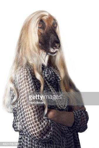 Senior woman with dog's head and long hair : Stock-Foto