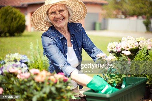 Senior Women Gardening Stock Photo