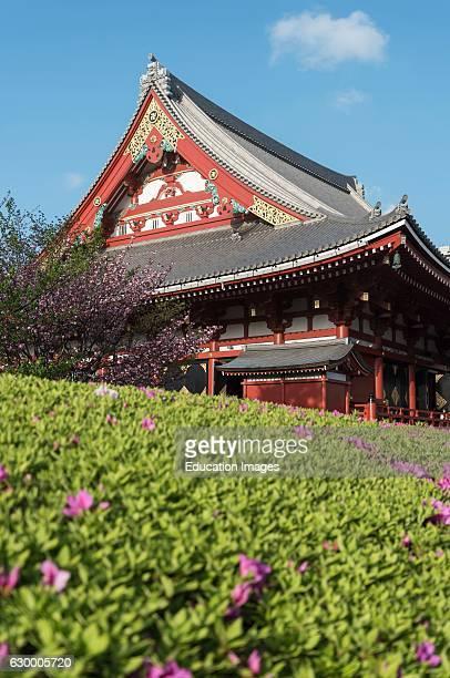 Sensoji Temple Asakusa Tokyo Japan