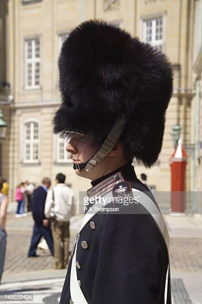 Sentry at the Amalienborg Palace, Copenhagen, Denmark