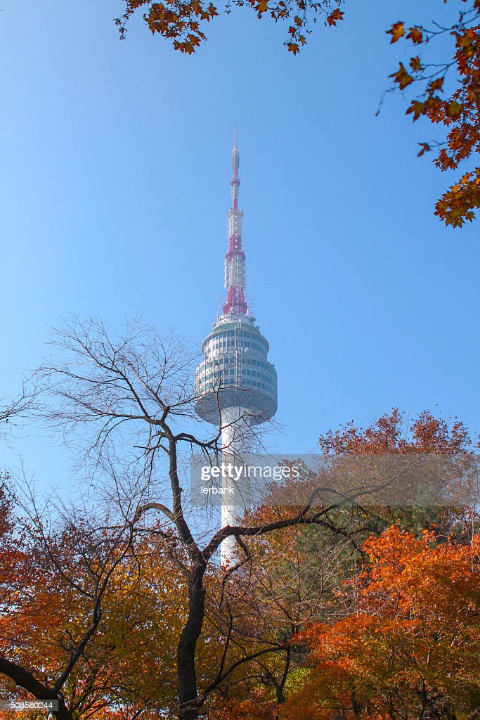 N Seoul Tower : Stock Photo