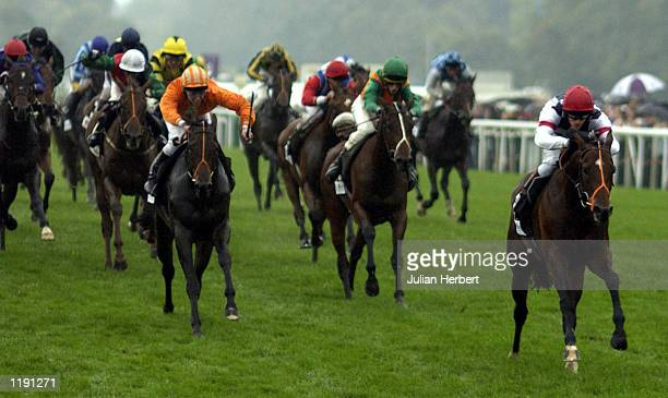 Robert Smith and Hail The Chief lead the field home to land The Mail On Sunday Mile Final run at Ascot DIGITAL IMAGE Mandatory Credit Julian...