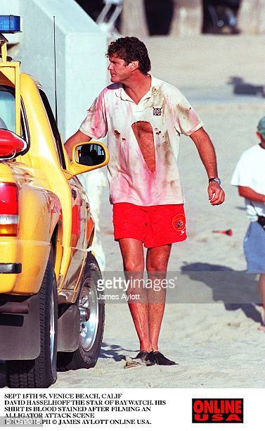 Sept 15Th 95 Venice Beach Calif David Hasselhoff The Star Of Baywatch After Filming An Alligator Attack Scenen