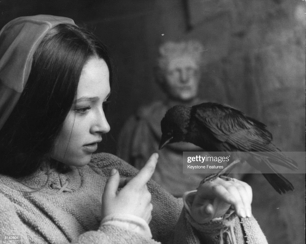 British actress Olivia Hussey as Juliet lets a rook peck at her finger in a scene from Franco Zeffirelli's 'Romeo and Juliet'