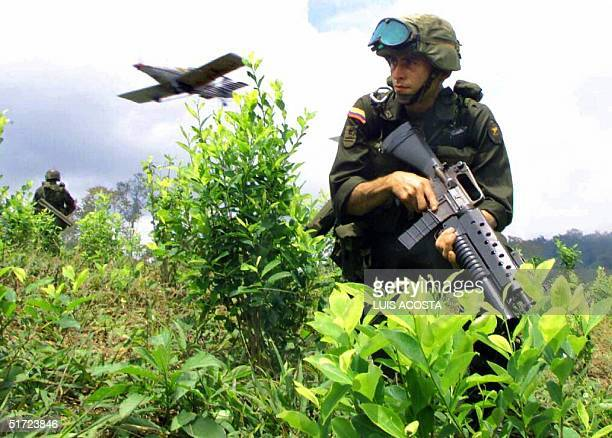 September 2000 a Columbian soldier advances in a field of cocaine while a plane sprays pesticides The Columbian government is continuing the...