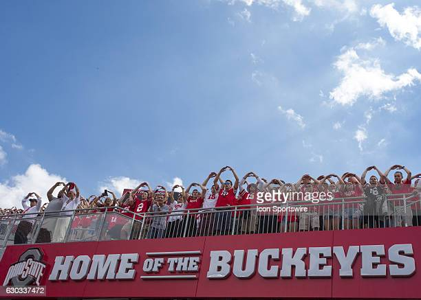 Ohio State fans show their spirit for their Buckeyes prior to the game between the Tulsa Golden Hurricanes and the Ohio State Buckeyes at Ohio...