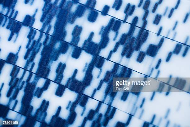 DNA sequence, close-up