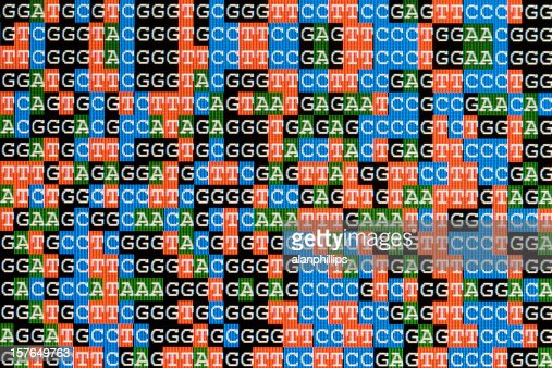DNA sequences unaligned on LCD computer screen