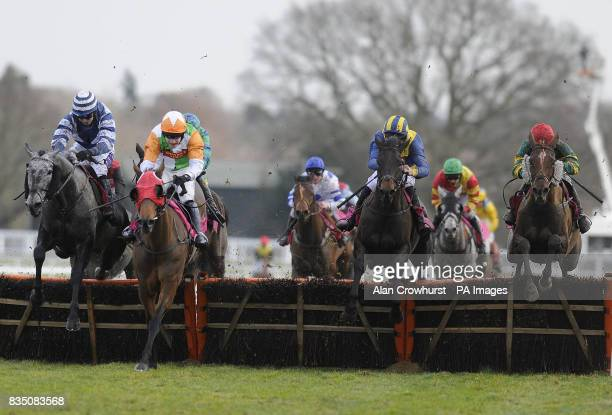 Serabad ridden by Paddy Brennan jump the last flight of hurdles to win The Betfair Your Perfect Match Handicap Hurdle Race during the Betfair Ascot...