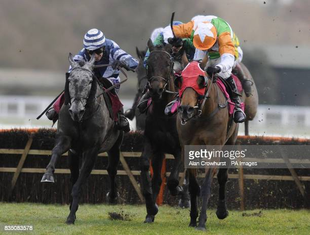 Serabad ridden by Paddy Brennan jumps the last flight of hurdles to win The Betfair Your Perfect Match Handicap Hurdle Race during the Betfair Ascot...