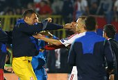 Serbia goalkeeper Zeljko Brkic punches an Albanian player on October 14 2014 after a UEFA Euro 2016 group I qualifying football match between Serbia...