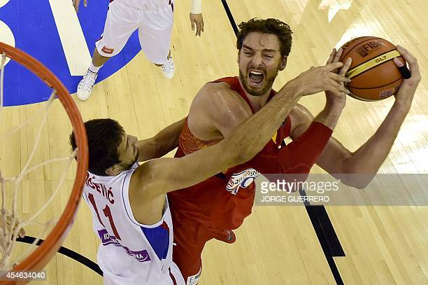 Serbia's forward Stefan Bircevic vies with Spain's forward Pau Gasol during the 2014 FIBA World basketball championships group A match Serbia vs...