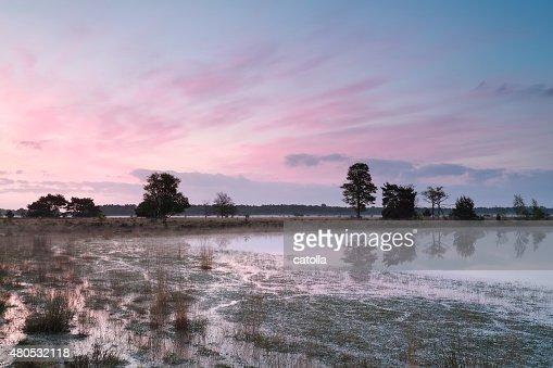 serene sunrise on wild lake : Stockfoto