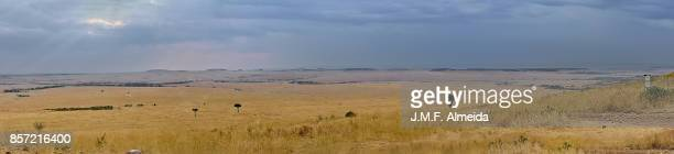 Serengeti from Masai Mara