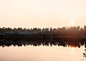View of Mew Lake in Algonquin Provincial Park, Ontario Canada