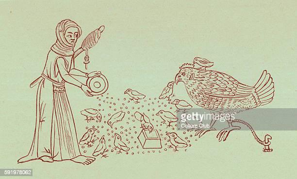 Serf feeding chickens After illuminations in the Luttrell Psalter 14th century manuscript c 1340