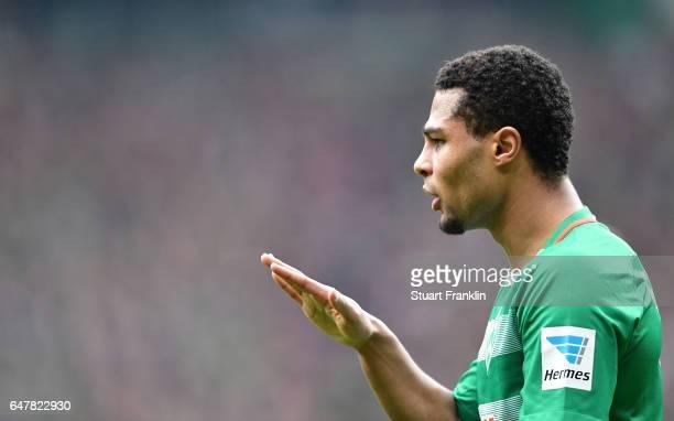 Serge Gnabry of Bremen gestures during the Bundesliga match between Werder Bremen and SV Darmstadt 98 at Weserstadion on March 4 2017 in Bremen...