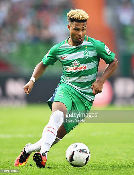 Serge Gnabry of Bremen in action during the Bundesliga match between Werder Bremen and FC Augsburg at Weserstadion on September 11 2016 in Bremen...