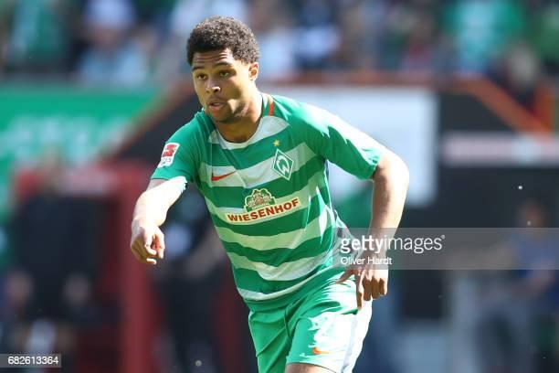 Serge Gnabry of Bremen in action during the Bundesliga match between Werder Bremen and TSG 1899 Hoffenheim at Weserstadion on May 13 2017 in Bremen...