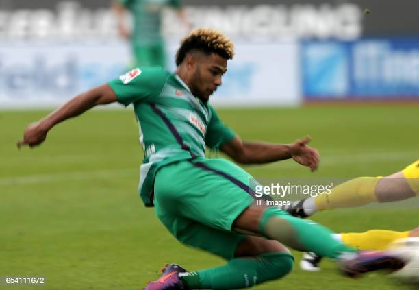 Serge Gnabry of Bremen scores a goal during the Bundesliga match between SV Darmstadt 98 and Werder Bremen at Stadion am Boellenfalltor on October 1...