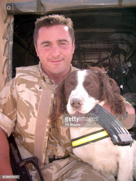 Sergeant Danny Morgan with his Dog of War Buster after playing fetch with an assault rifle magazine *09/12/03 Buster the fiveyearold springer spaniel...